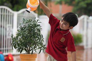 جذب همکاری کودک در خانه