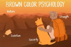 روانشناسی رنگ قهوه ای
